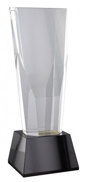 Tall Crystal Award