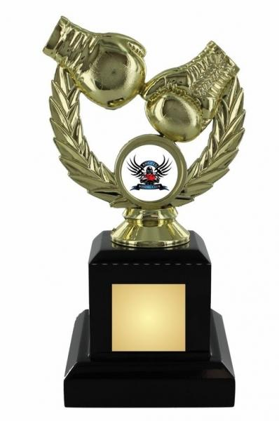 gold boxing trophy