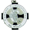 Camogie Medal Silver