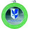 Silver Connacht Medal