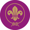 scouts medal sticker