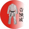 Martial Arts Medal