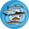Fishing Medal
