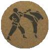 Karate Medal Centre