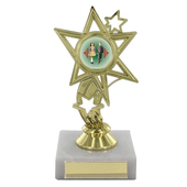 Gold Finish Star Design Trophy