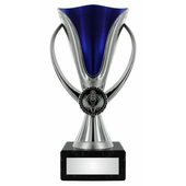 blue/silver CUP