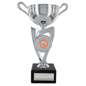 Silver Finish Plastic Trophy Cup