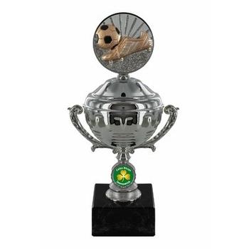 Disc Trophy