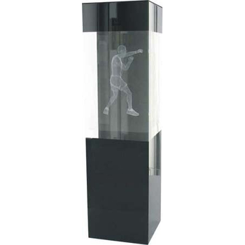 3D Crystal Boxing Trophy