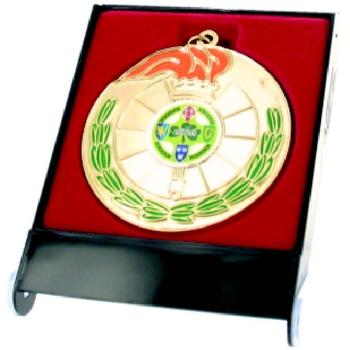 Plastic Medal Box