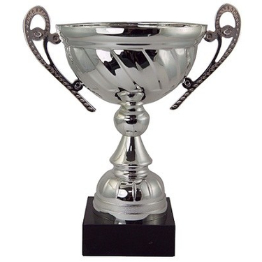 Silver Finish Trophy Cup